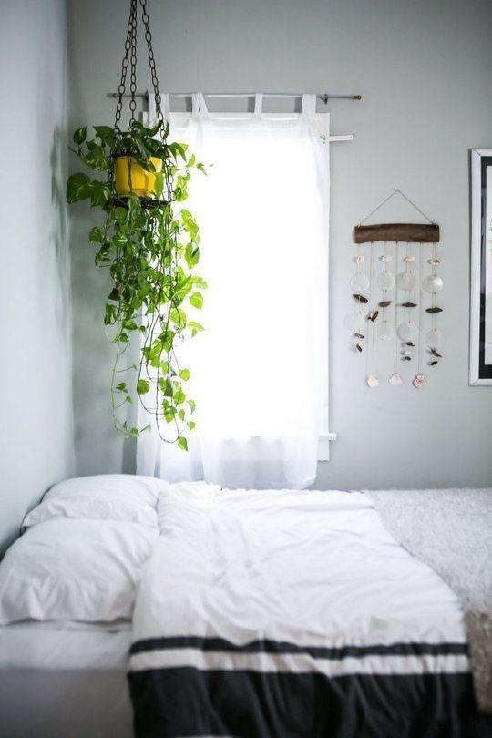Roof Hanging Plants5